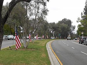 Flags on the Median